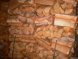 Birch firewood, kiln drying