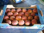 Персики Греция - фото 3