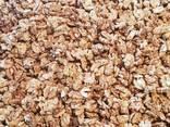 Подаём грецкий орех от тонны - фото 3